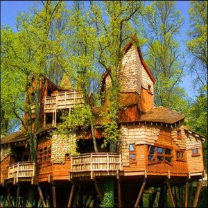 Tree House Resorts